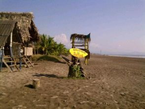 Stoners Surf Camp